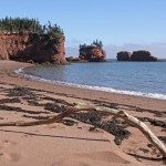 Beautiful but rugged Bay of Fundy coast