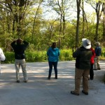 Looking for birds in Pt Pelee